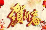 春节的作文300字