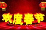 过春节的作文600字